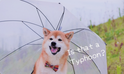 台風、天災 英語